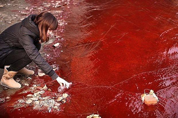 Hình ảnh ô nhiễm môi trường nước nghiêm trọng