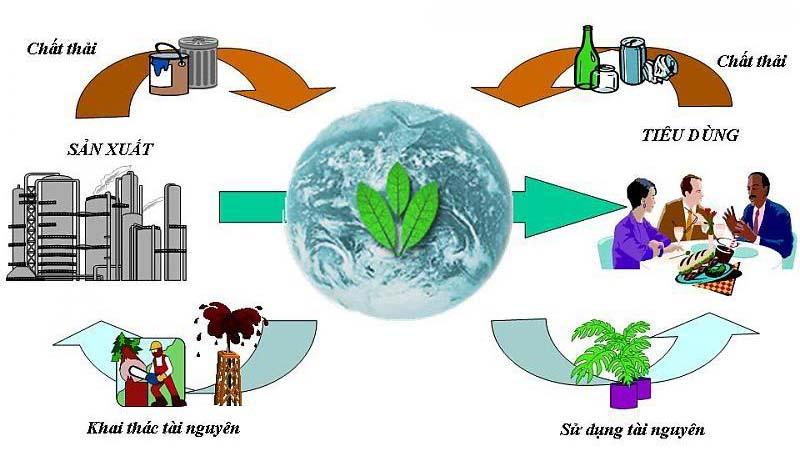 Ô nhiễm môi trường để lại hậu quả gì